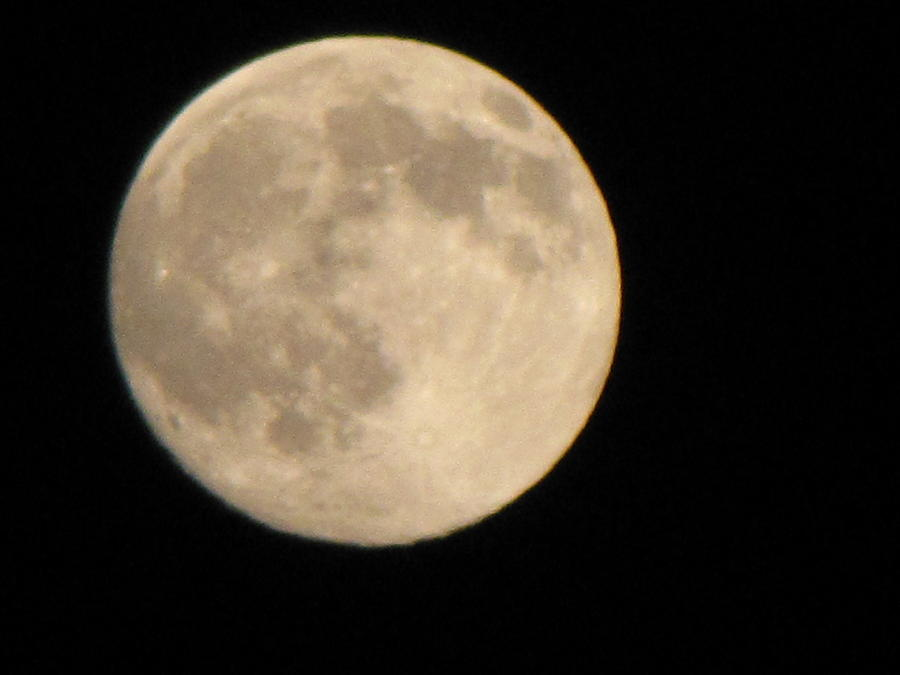 Moon Photograph - Moon by Sylvia Wanty