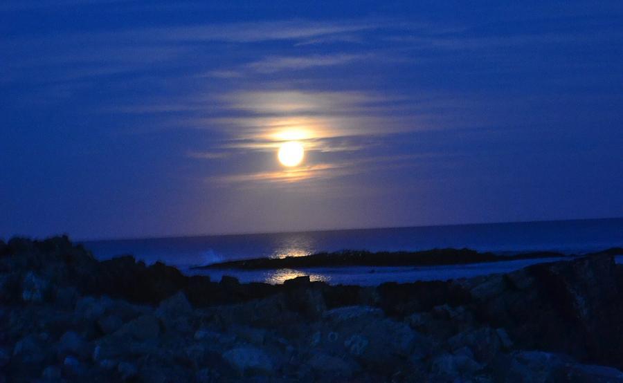 Moonbeams by Nina-Rosa Duddy