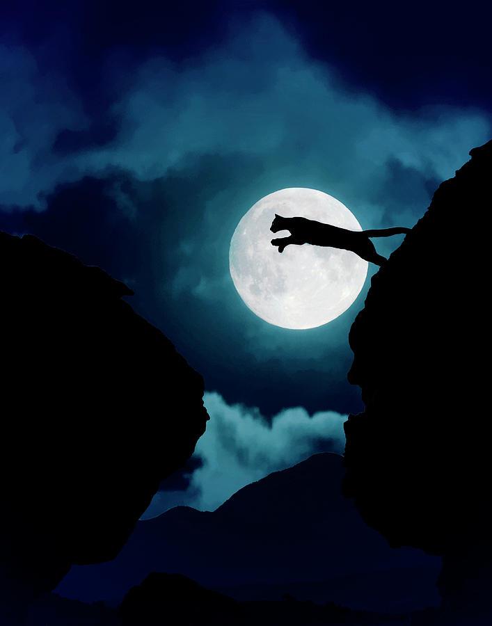 Mountain Lion Photograph - Moonlight Leap by Roy Nierdieck