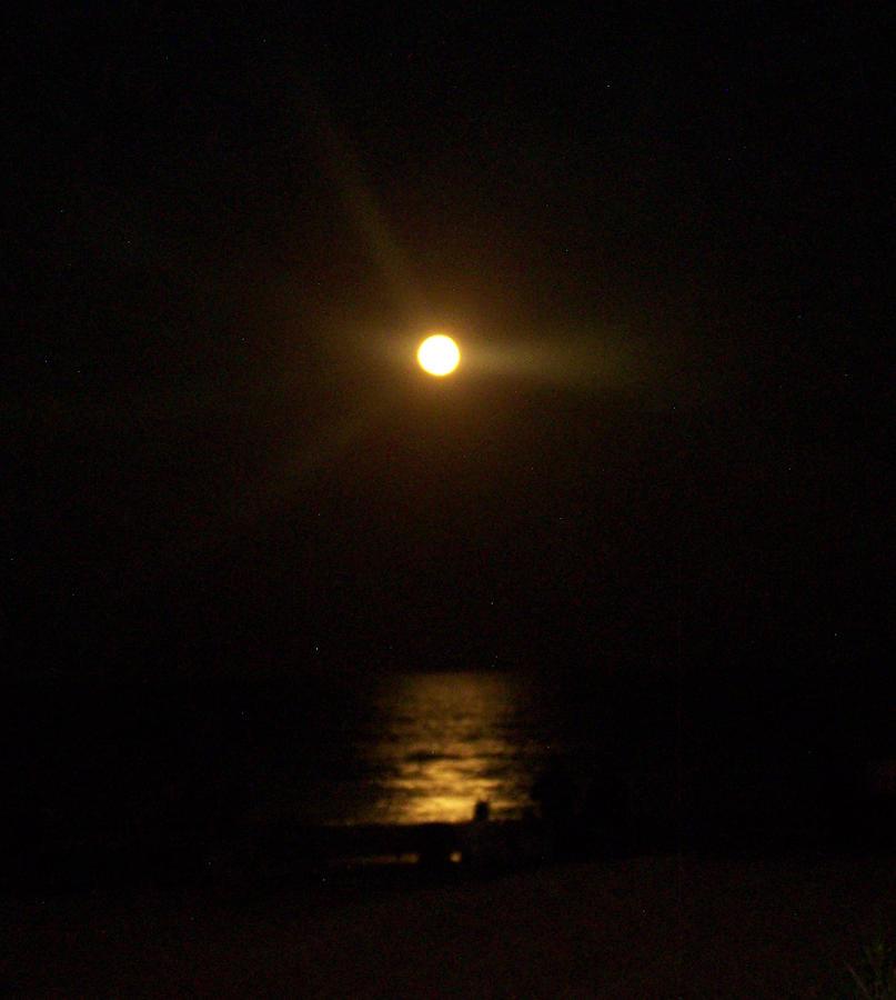 Full Moon Photograph - Moonlight Magic by Patricia Taylor