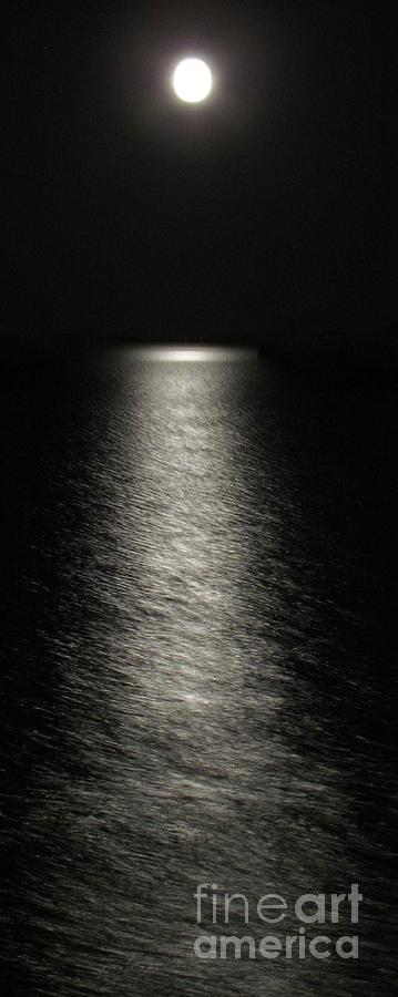 MOONLIGHT REFLECTION by Barbara Henry