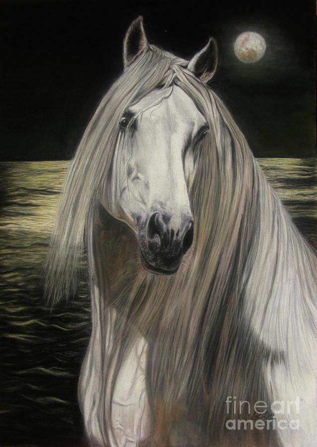 Pferd Painting - Moonlight by Sabine Lackner