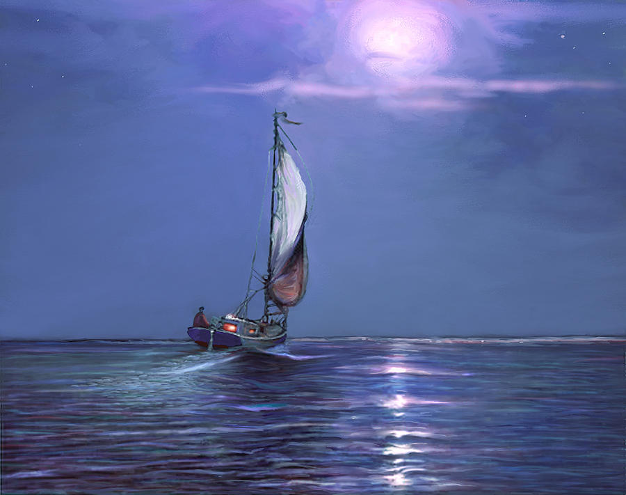 Moonlight Sailing by David Van Hulst