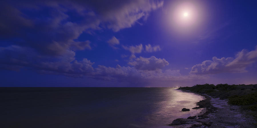 Moonlight Sonata Photograph - Moonlight Sonata by Chad Dutson
