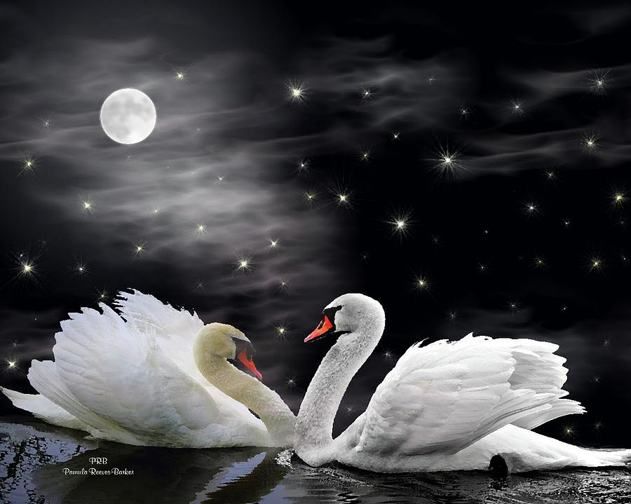 Swans By Moonlight >> Moonlight Swans Digital Art By Pamula Reeves Barker