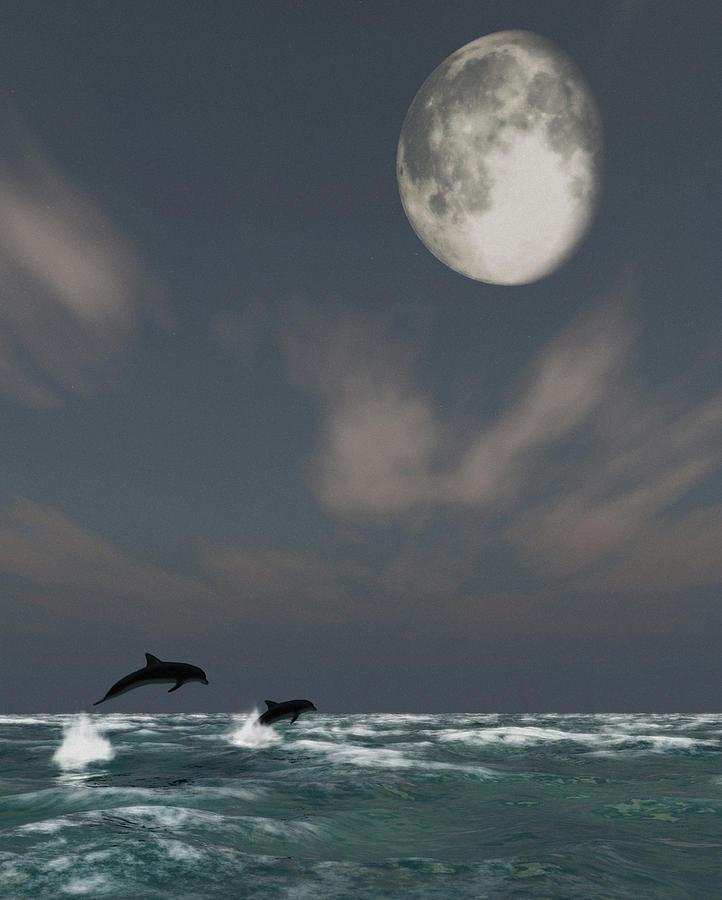 Oceans Digital Art - Moonlight Swim by Richard Rizzo