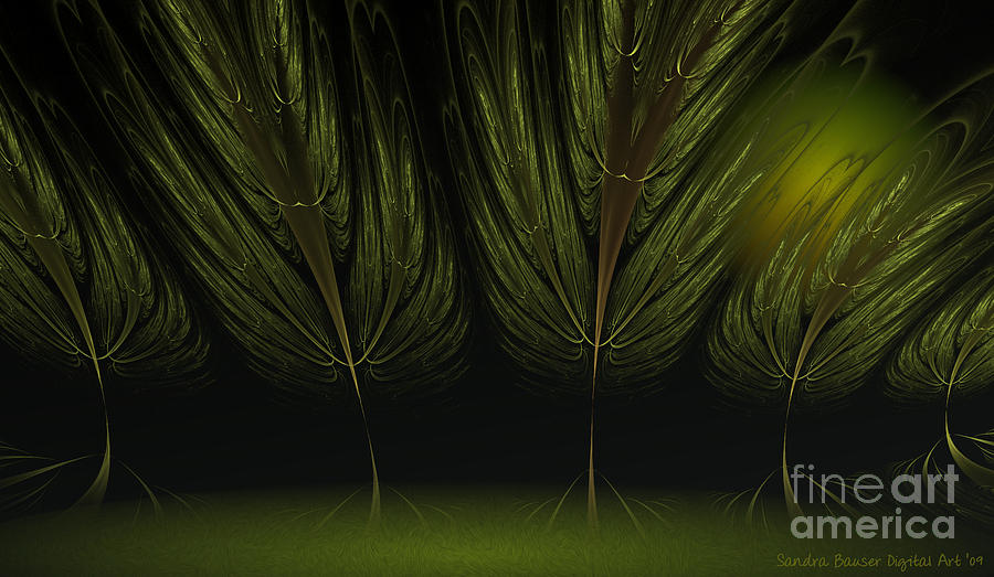 Digital Digital Art - Moonlit Forest by Sandra Bauser Digital Art