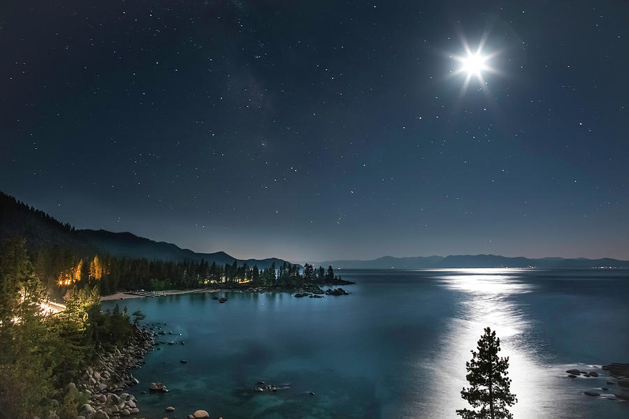 Astrophotography Photograph - Moonlit Tree On Lake Tahoe by Tony Fuentes