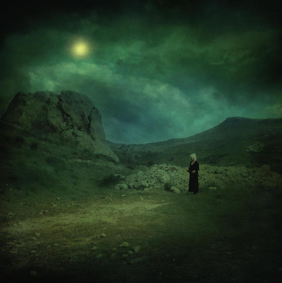 Night Photograph - Moonloop by Zapista Zapista