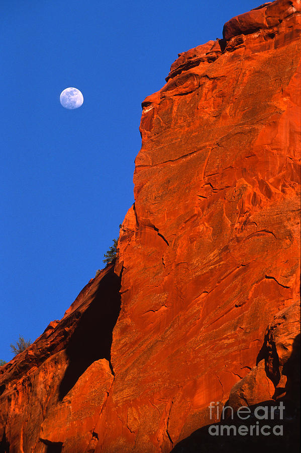 Full Moon Photograph - Moonrise In Grand Staircase Escalante by Sandra Bronstein