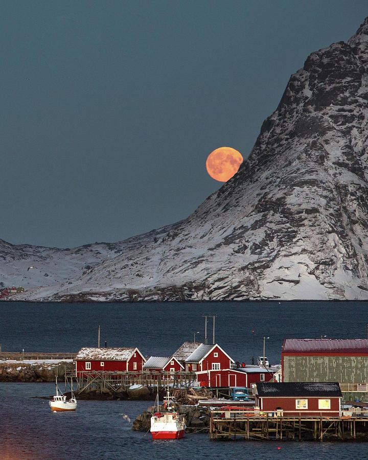 Reine Photograph - Moonrise In Reine by Alex Conu