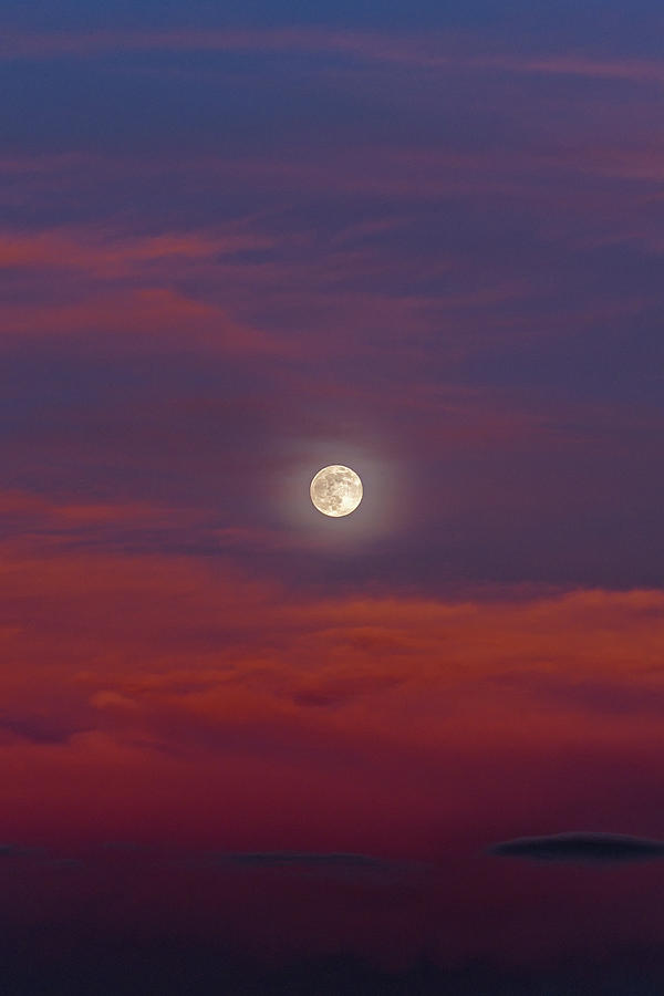 Moonrise, Sunset by Jason Coward