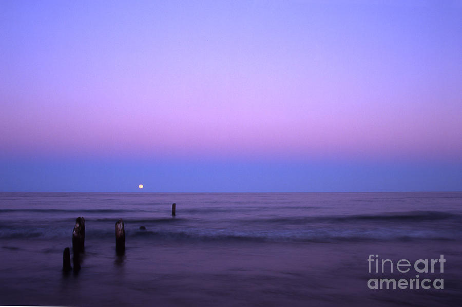 Moon Photograph - Moonrise by Timothy Johnson