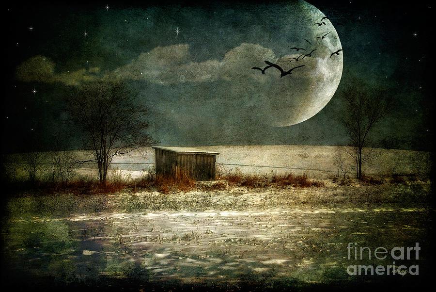 Moon Photograph - Moonstruck by Lois Bryan