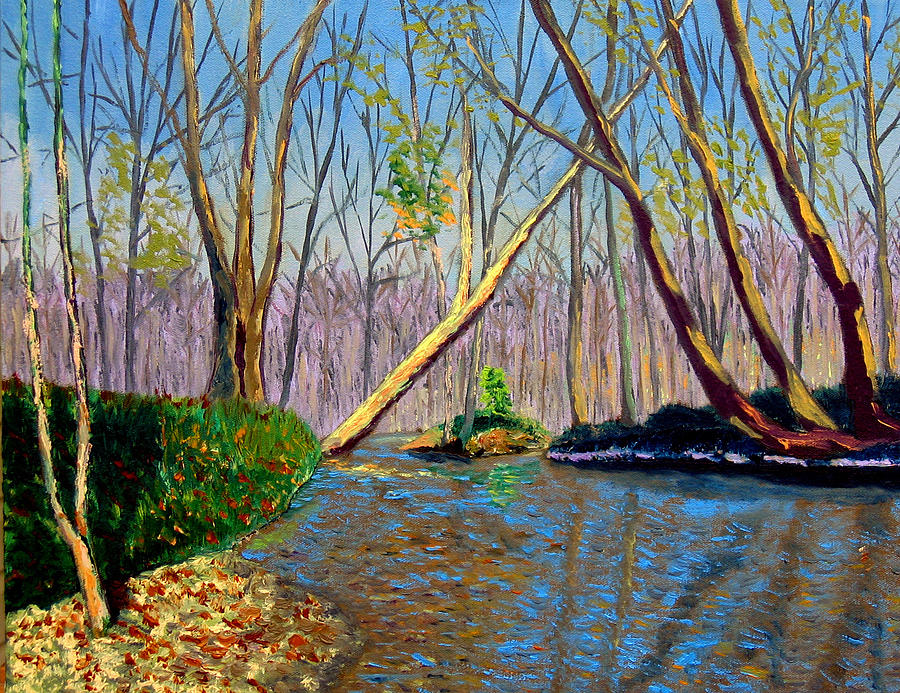 Creek Painting - Mooresville November by Stan Hamilton
