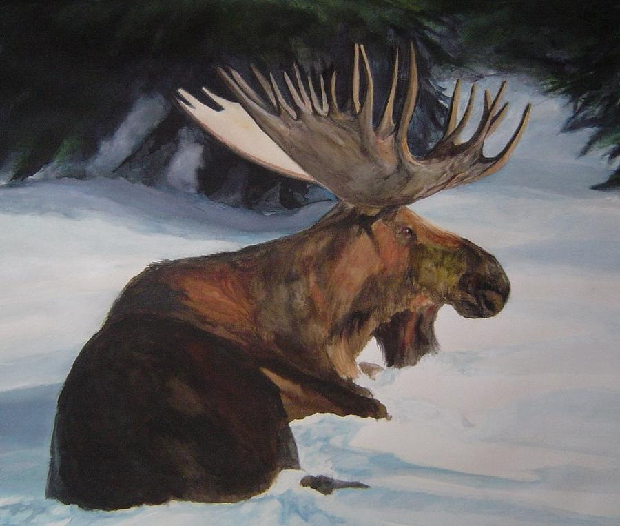 Moose In Winter Painting by Susan Tilley