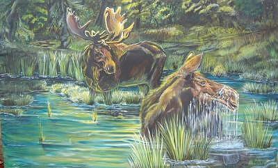 Moose  Painting by Merideth Van Every