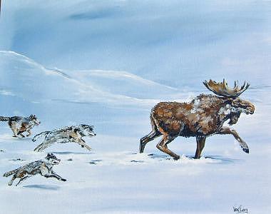 Moose On The Run Painting by Merideth Van Every
