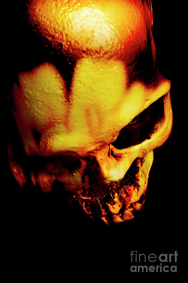 Horror Photograph - Morbid Decaying Skull by Jorgo Photography - Wall Art Gallery