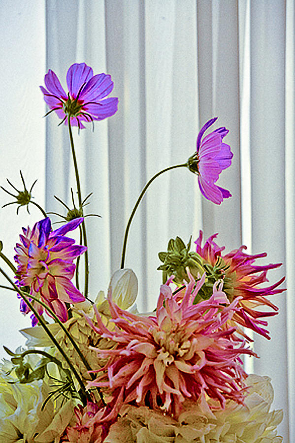 Flowers Photograph - More Formal Flowers by John Toxey
