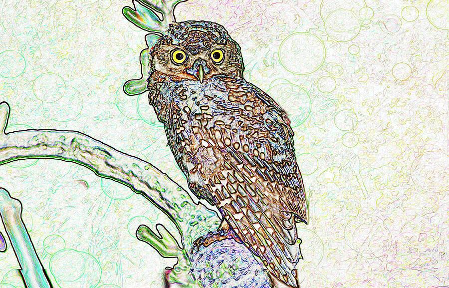 Owlet Digital Art - More Heard Less Spoke  by Manjot Singh Sachdeva
