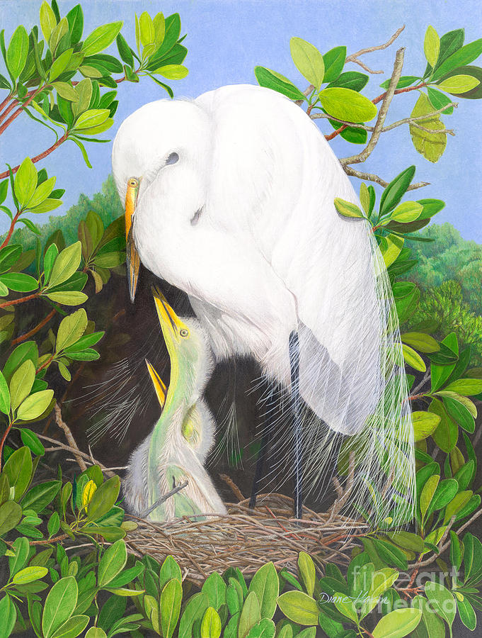 Great Egret Painting - More Mommy by Diane Harm