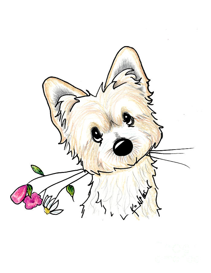 Morkie Illustration by Kim Niles