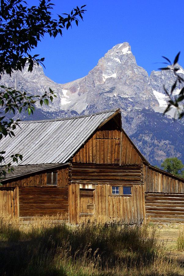 Barn Photograph - Mormon Row Barn  1 by Marty Koch