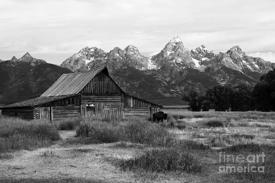 Grand Tetons Photograph - Mormon Row Famous Barn by Teresa Zieba