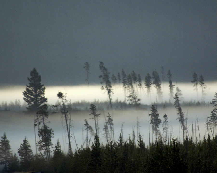 Yellowstone National Park Photograph - Morning Along The Madison by Marty Koch