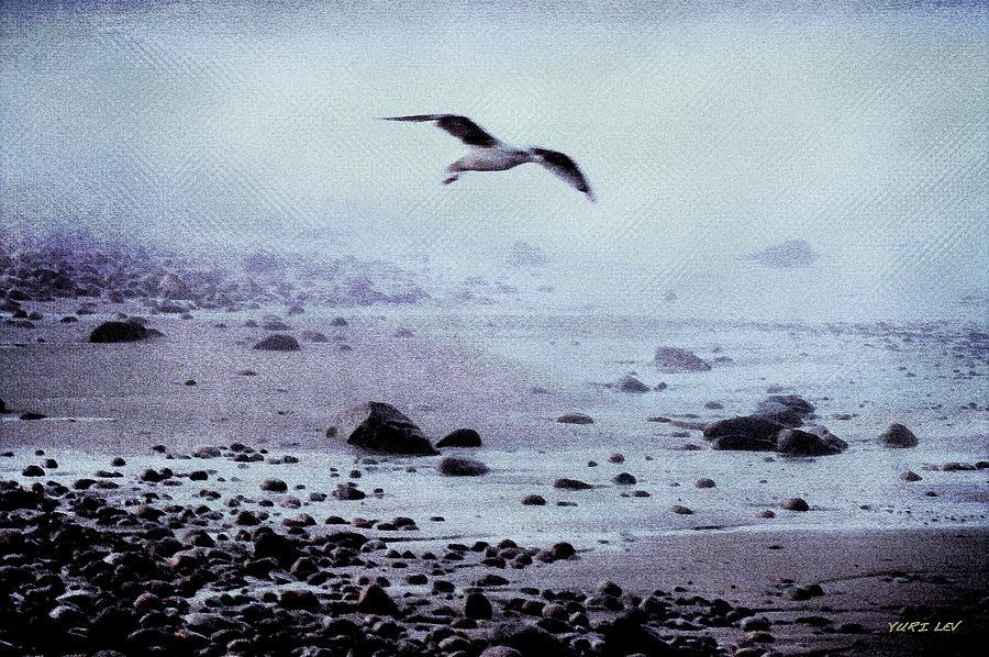 Morning At Back Beach Rockport Ma Photograph