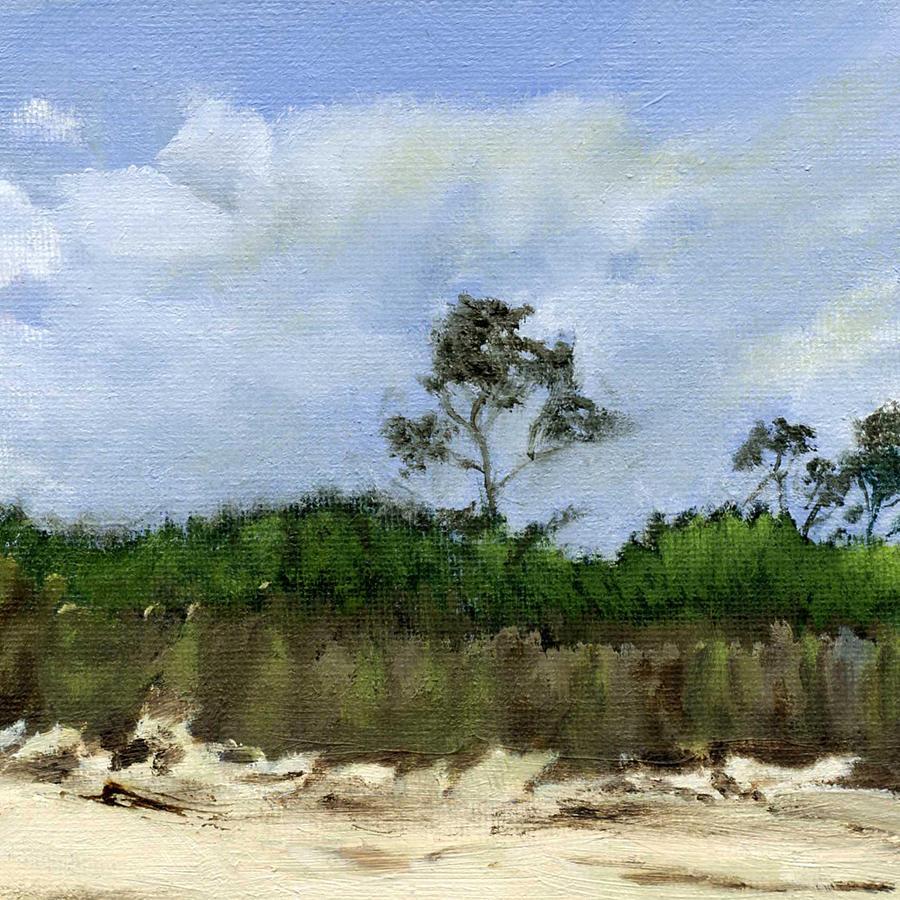 Morning at Savage Neck Dunes by BARBARA J HART