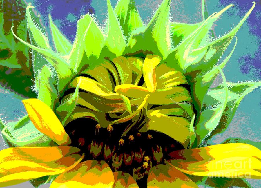 Sunflowers Photograph - Morning Awakening by Lori Mellen-Pagliaro
