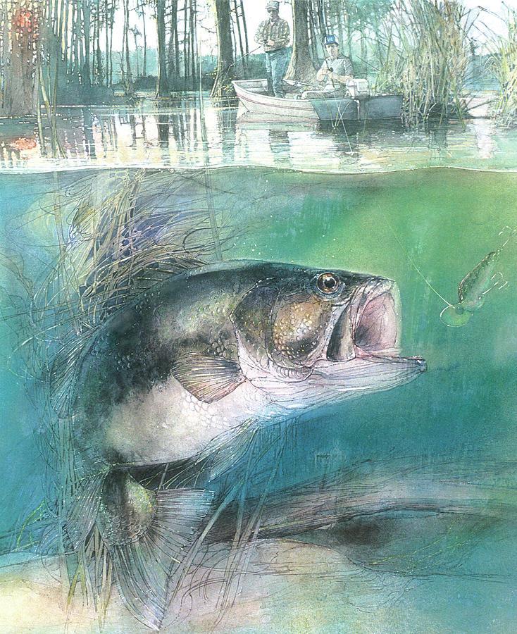 morning catch by John Dyess