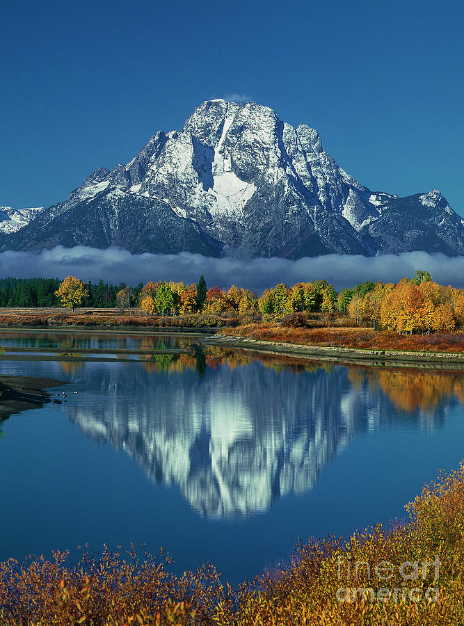morning cloud layer oxbow bend in fall grand tetons national park by Dave Welling