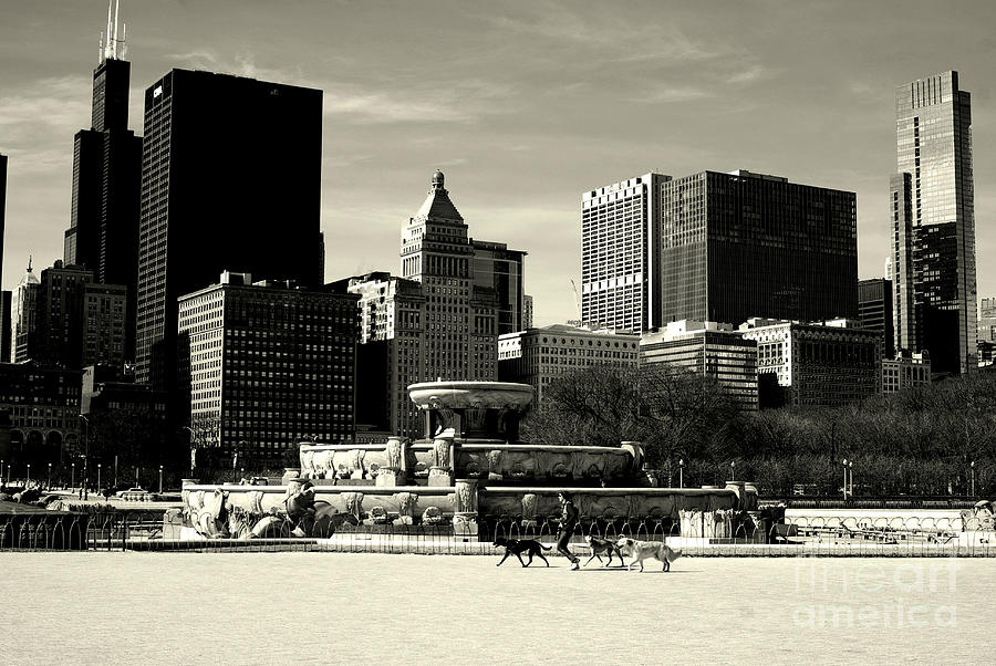 Black And White Photograph - Morning Dog Walk - City of Chicago by Frank J Casella