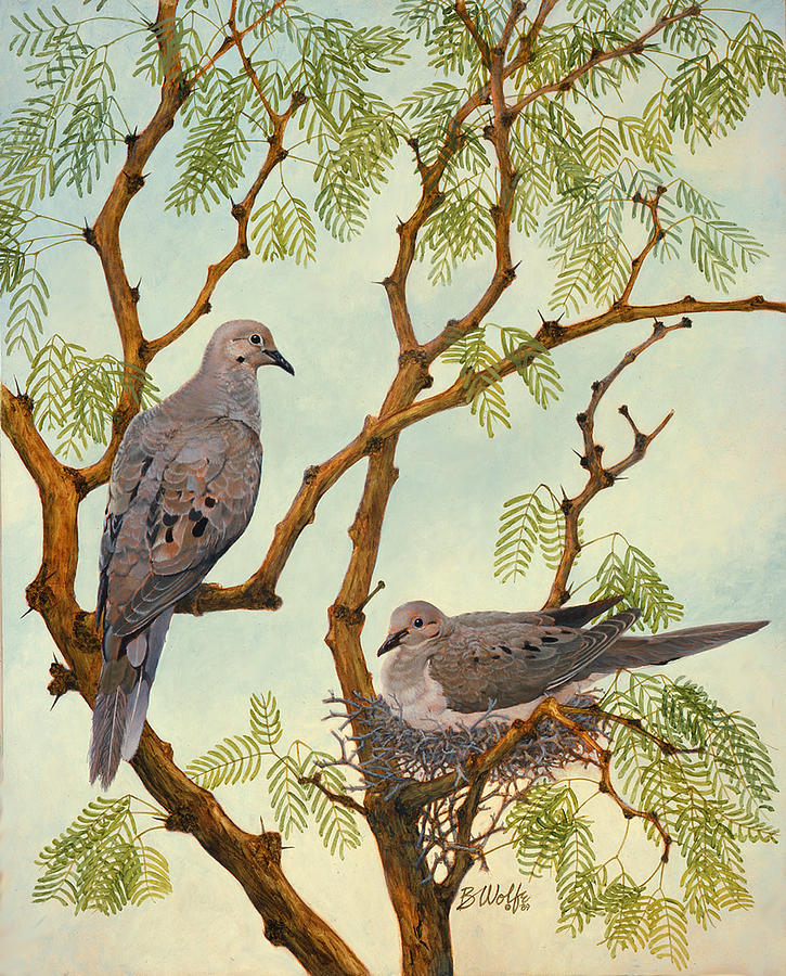 Morning Dove Pair Painting by Bassel Wolfe