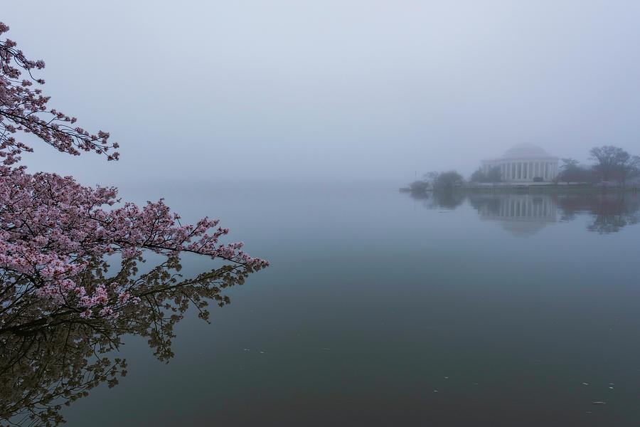 Morning Fog at The Tidal Basin by Michael Donahue