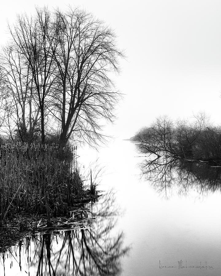 Morning Fog - Inlet, Lake Logan by Roman Wilshanetsky