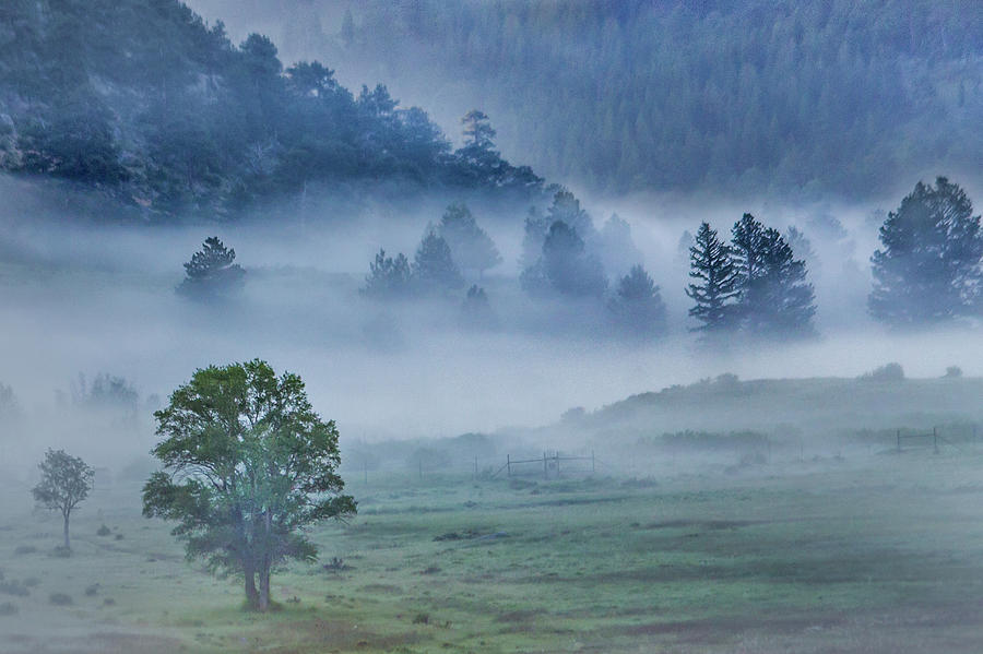 Mountain Fog Photograph