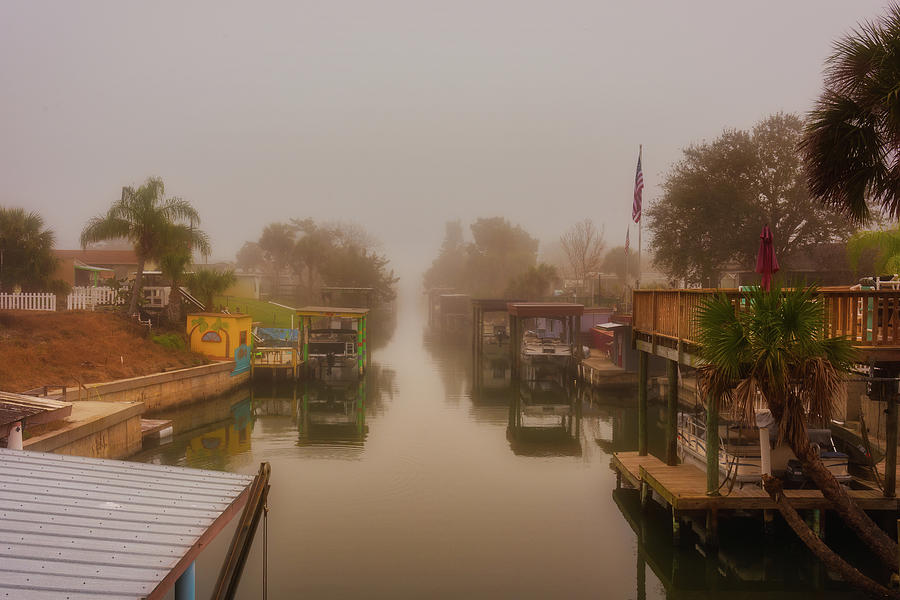 Morning Fog  by Norman Peay