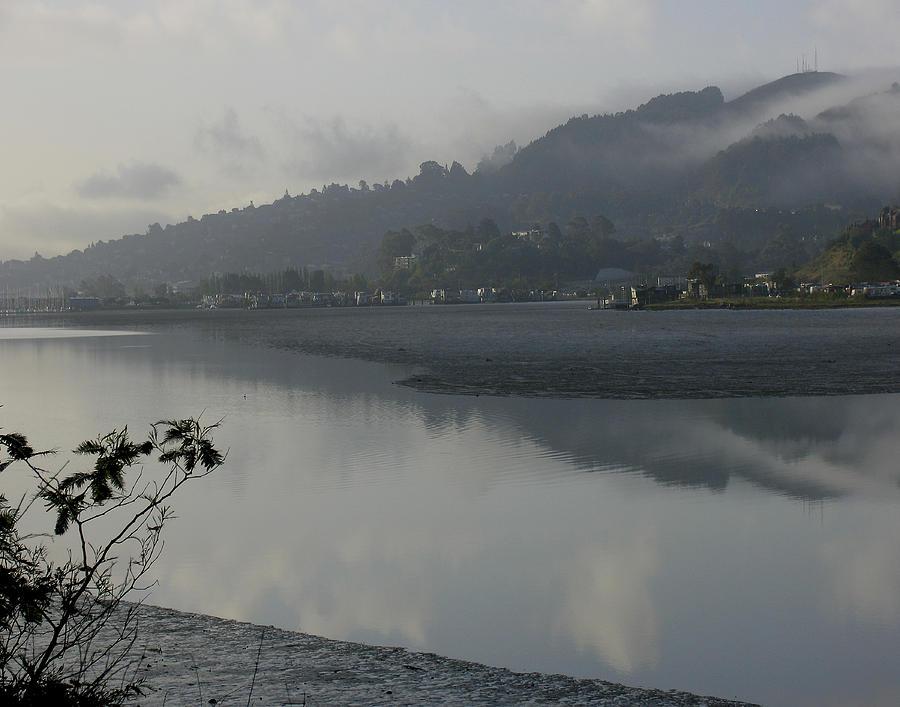Morning fog Photograph by Vari Buendia