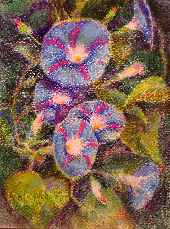 Floral Painting - Morning Glories by Bill Meeker