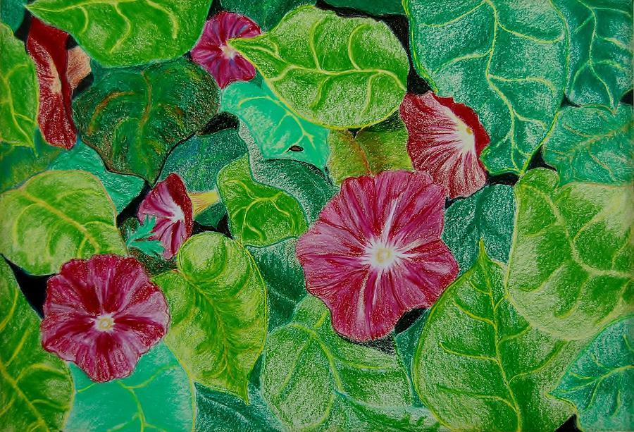 Flowers Mixed Media - Morning Glory by Charla Van Vlack