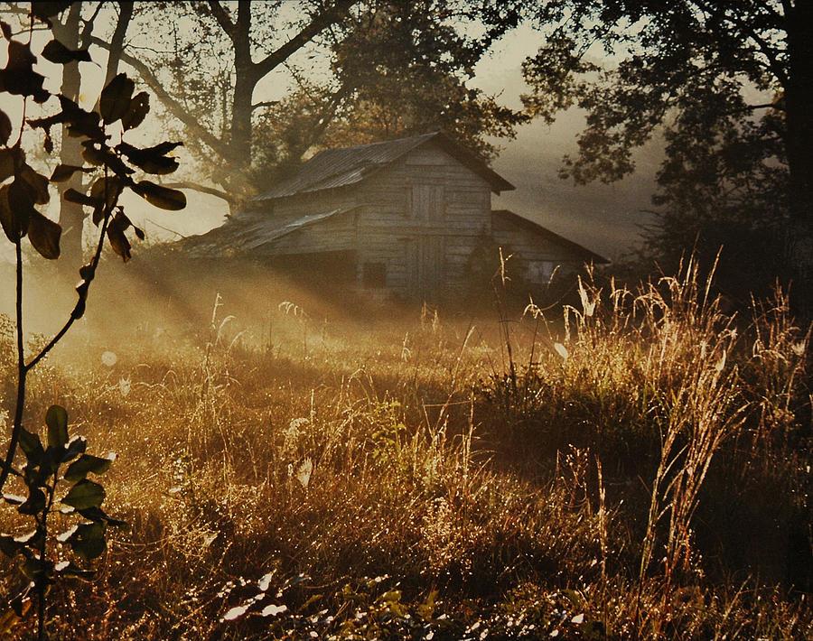 Landscape Photograph - Morning Glory by Lori Mellen-Pagliaro