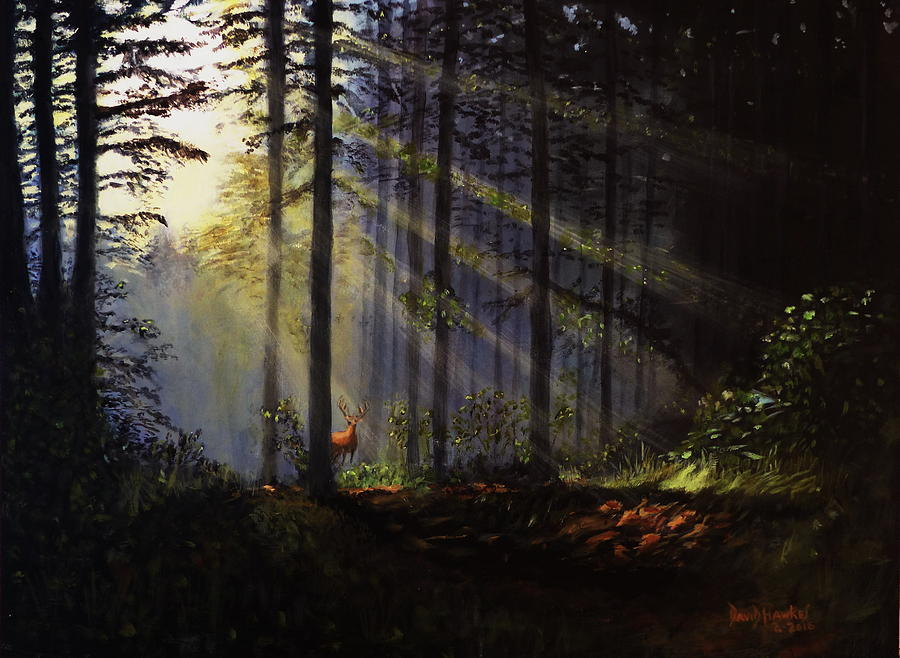 Trees Painting - Morning Glow In The Forest by David Hawkes