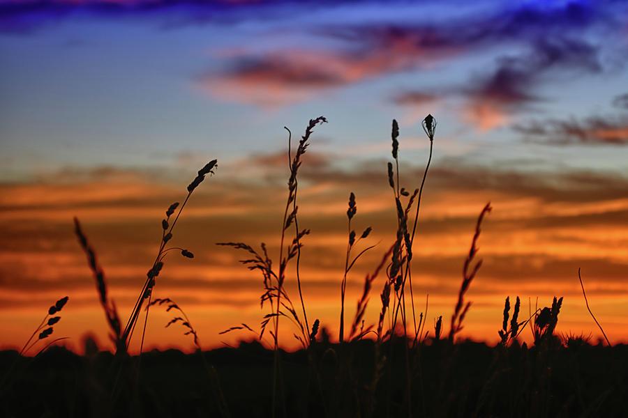 Sunrise Photograph - Morning Has Broken by Gaby Swanson
