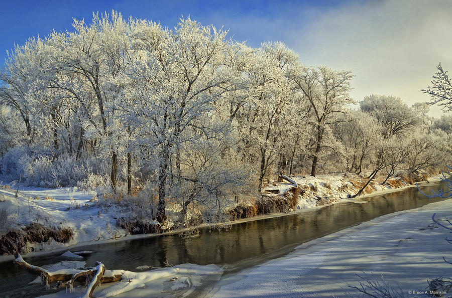 Winter Landscape Photograph - Morning Icing Along The Creek by Bruce Morrison