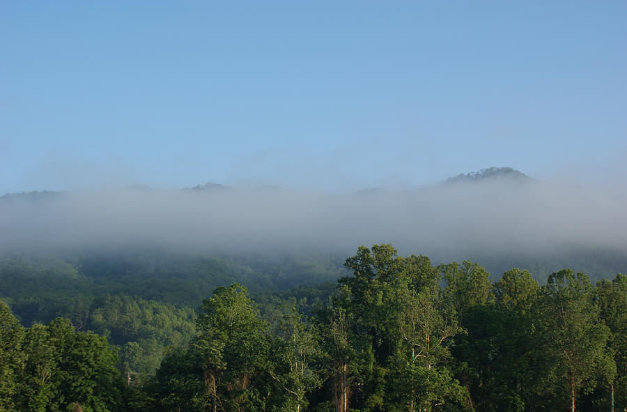 Fog Photograph - Morning In The Hills Of Tennessee by Terry Hoss