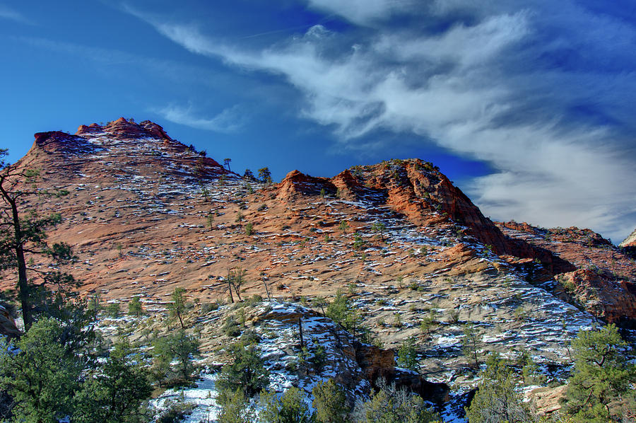 Morning In Zion Photograph